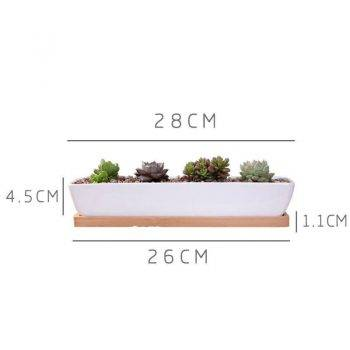 Rectangular White Ceramic Bonsai/Succulents Plant Pots - Flower Pot Decoration 1