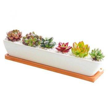 Rectangular White Ceramic Bonsai/Succulents Plant Pots - Flower Pot Decoration 5