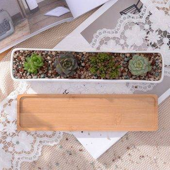 Rectangular White Ceramic Bonsai/Succulents Plant Pots - Flower Pot Decoration 2