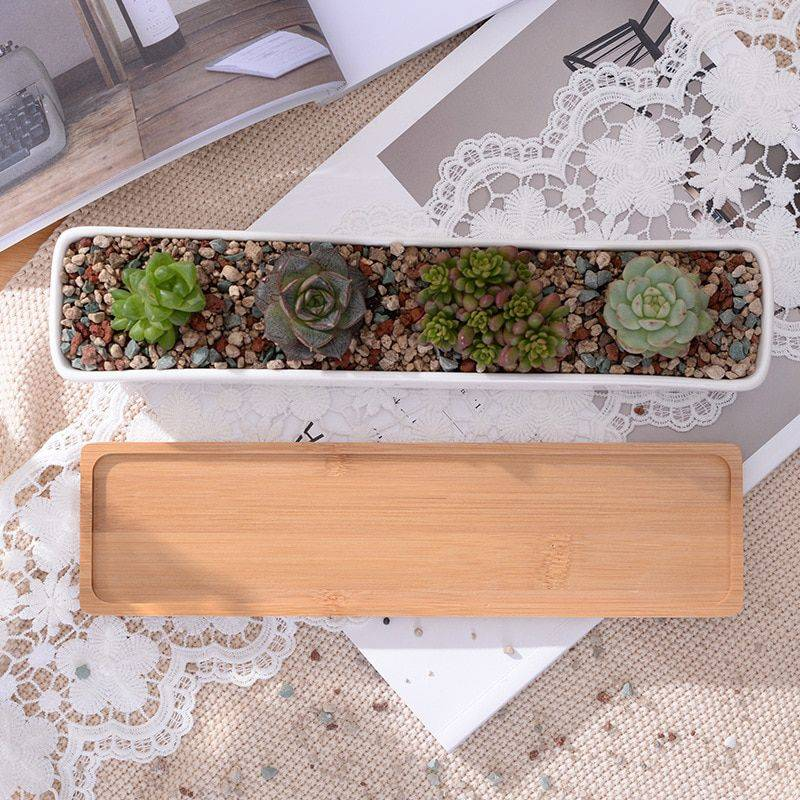Rectangular White Ceramic Bonsai/Succulents Plant Pots – Flower Pot Decoration
