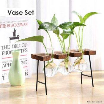 Glass Hanging Hydroponics Pot With Wooden Tray - Indoor Plants With Pot 5