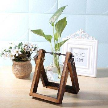 Glass Hanging Hydroponics Pot With Wooden Tray - Indoor Plants With Pot 2