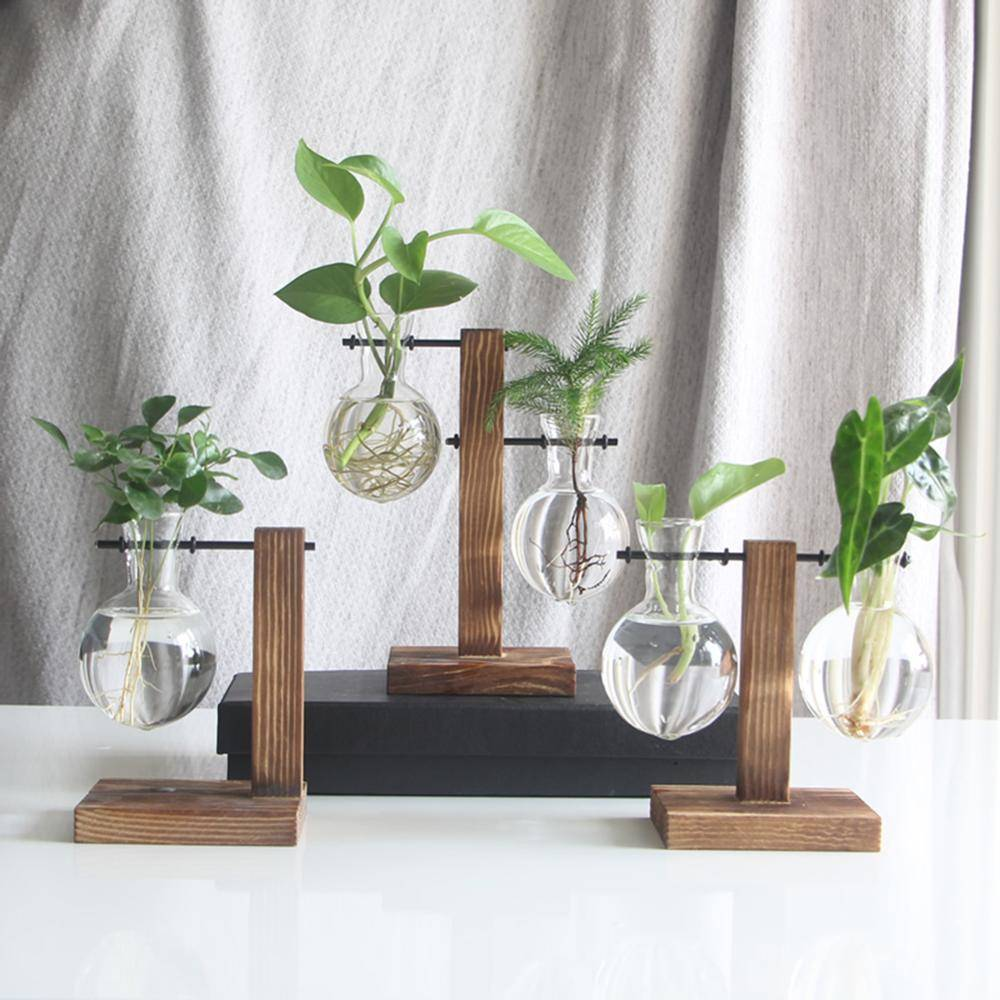 Glass Hanging Hydroponics Pot With Wooden Tray – Indoor Plants With Pot