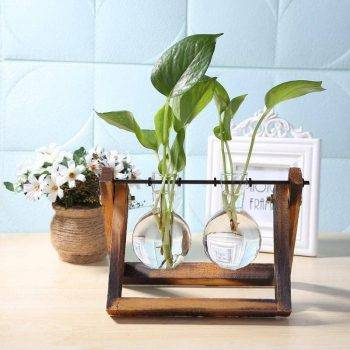 Glass Hanging Hydroponics Pot With Wooden Tray - Indoor Plants With Pot 1