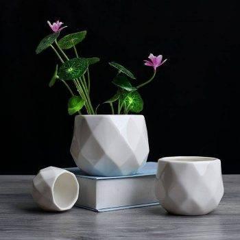Small Octagon White Ceramic Plant Pots - Flower Pots For Bonsai/Cactus/Succulent 3