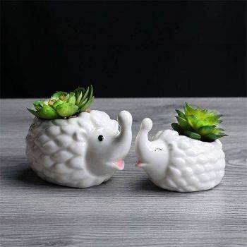Cute Small White Glazed Ceramic Hedgehog Plan Pots - Indoor Plants In Pot 1