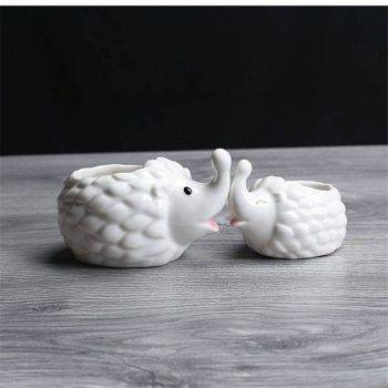 Cute Small White Glazed Ceramic Hedgehog Plan Pots - Indoor Plants In Pot 3