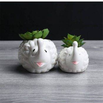 Cute Small White Glazed Ceramic Hedgehog Plan Pots - Indoor Plants In Pot 2