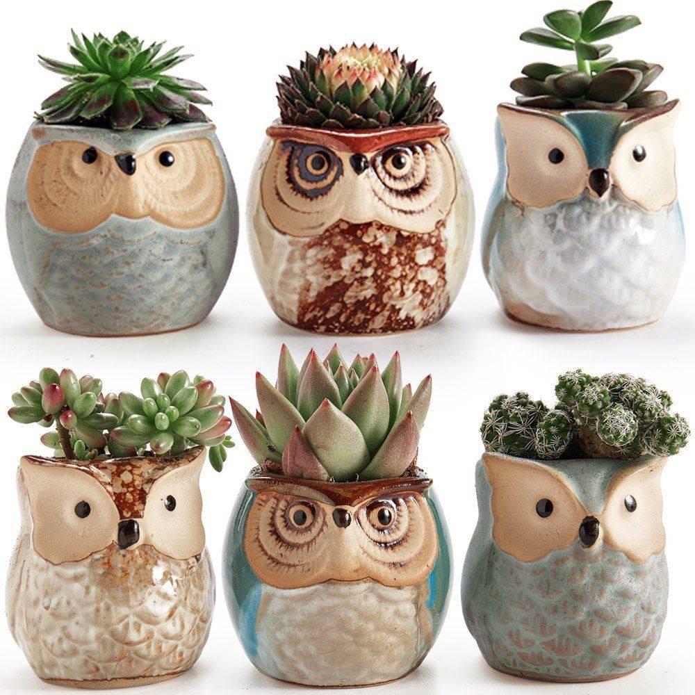 Small Ceramic Owl Plant Pots For Bonsai/Cactus/Succulents – Lovely Flower Pots For Home Decor