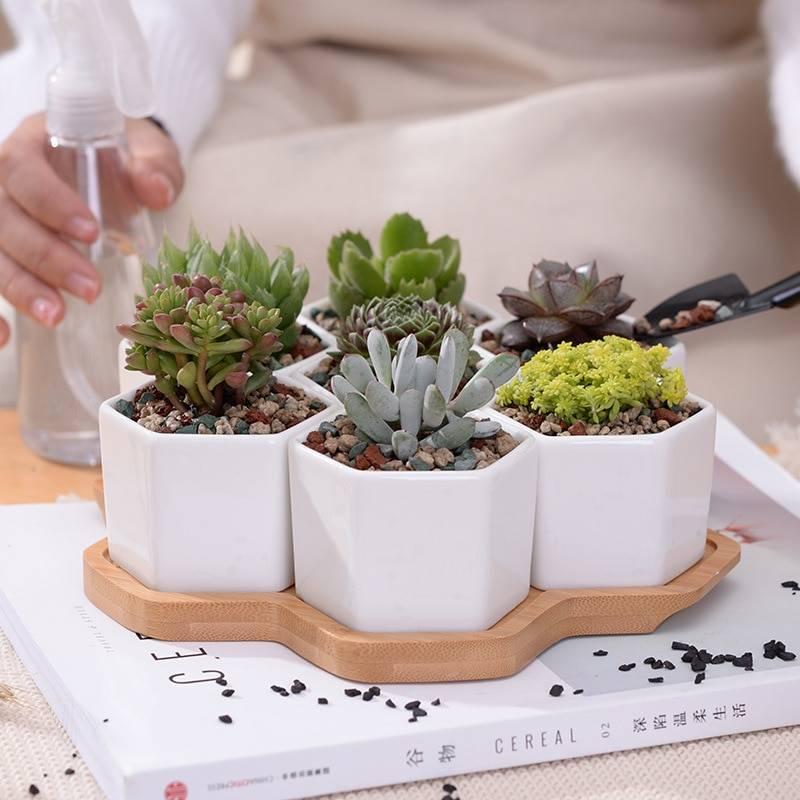 Hexagon White Ceramic Succulent/Bonsai Plant Pots – Flower Pot With Stand