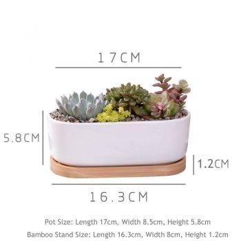 Oval White Ceramic Succulent/Bonsai Plant Pot - Flower Pot Decoration 1