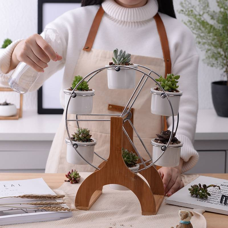 White Ceramic Flower Pots With Ferris Wheel – Succulent Planters