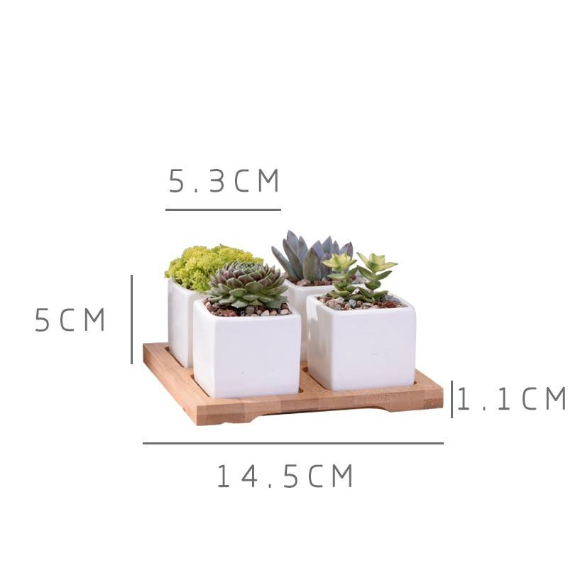 Set of 4 Minimalist Ceramic Succulent Planter Pot with Bamboo Stand – Small Flower Pots