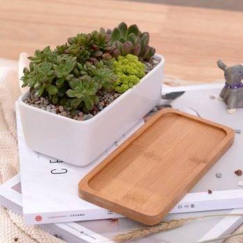 1 Set Minimalist Rectangle White Ceramic Succulent Plant Pots - Flower Pot For Home Decor 4