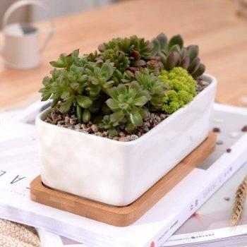 1 Set Minimalist Rectangle White Ceramic Succulent Plant Pots - Flower Pot For Home Decor 2