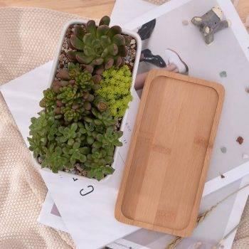 1 Set Minimalist Rectangle White Ceramic Succulent Plant Pots - Flower Pot For Home Decor 5