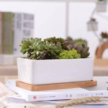 1 Set Minimalist Rectangle White Ceramic Succulent Plant Pots - Flower Pot For Home Decor 3