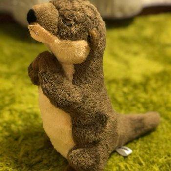 River Otter Plush Toys - Otter Stuffed Animals Toys For Kids Birthday Gifts 5