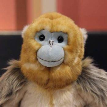 Monkey Plush Toy For Kids - Sitting Golden Monkey Stuffed, Animal Toys, Gift Ideas 1