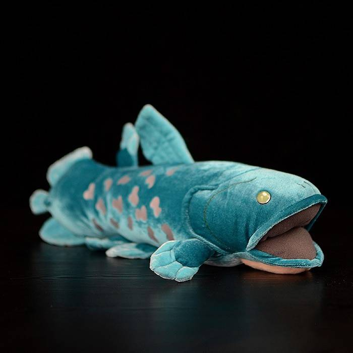 38cm Long Lifelike Huggable Coelacanth Stuffed Toys Soft Simulation Sea Animals Plush Toy Fish Dolls For Kids Birthday Gifts